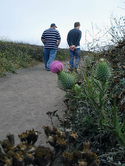 Steve and Dan walking in Montana de Oro