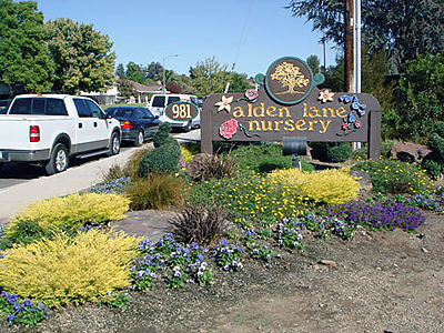 Alden Lane Nursery