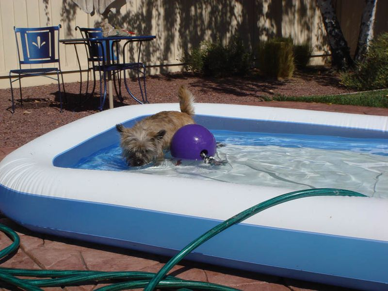Fearghus with ball in wading pool