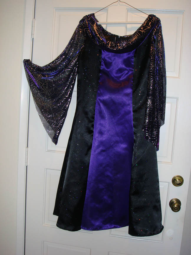 Miss Ls Halloween costume dress