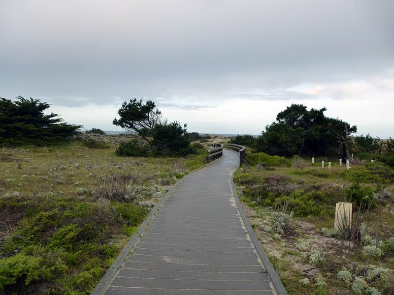 Asilomar Boardwalk to the beach