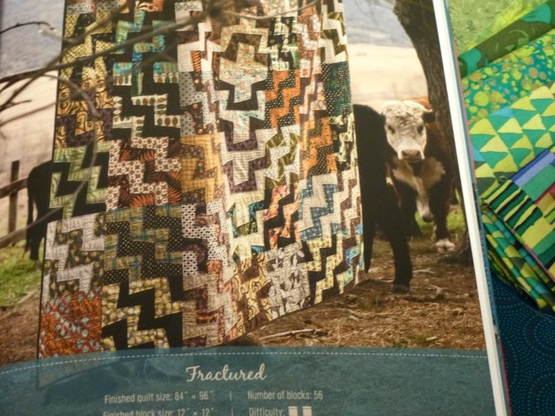Fractured quilt in Kathy Doughty book