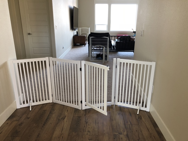 Standing Dog Gate in Entryway