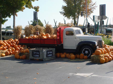 October_truck_and_pumpkins
