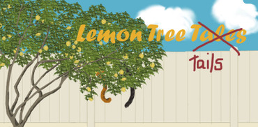 Plain_lemon_tree_with_tails