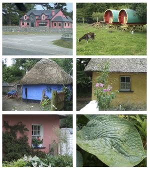 Irishcolours